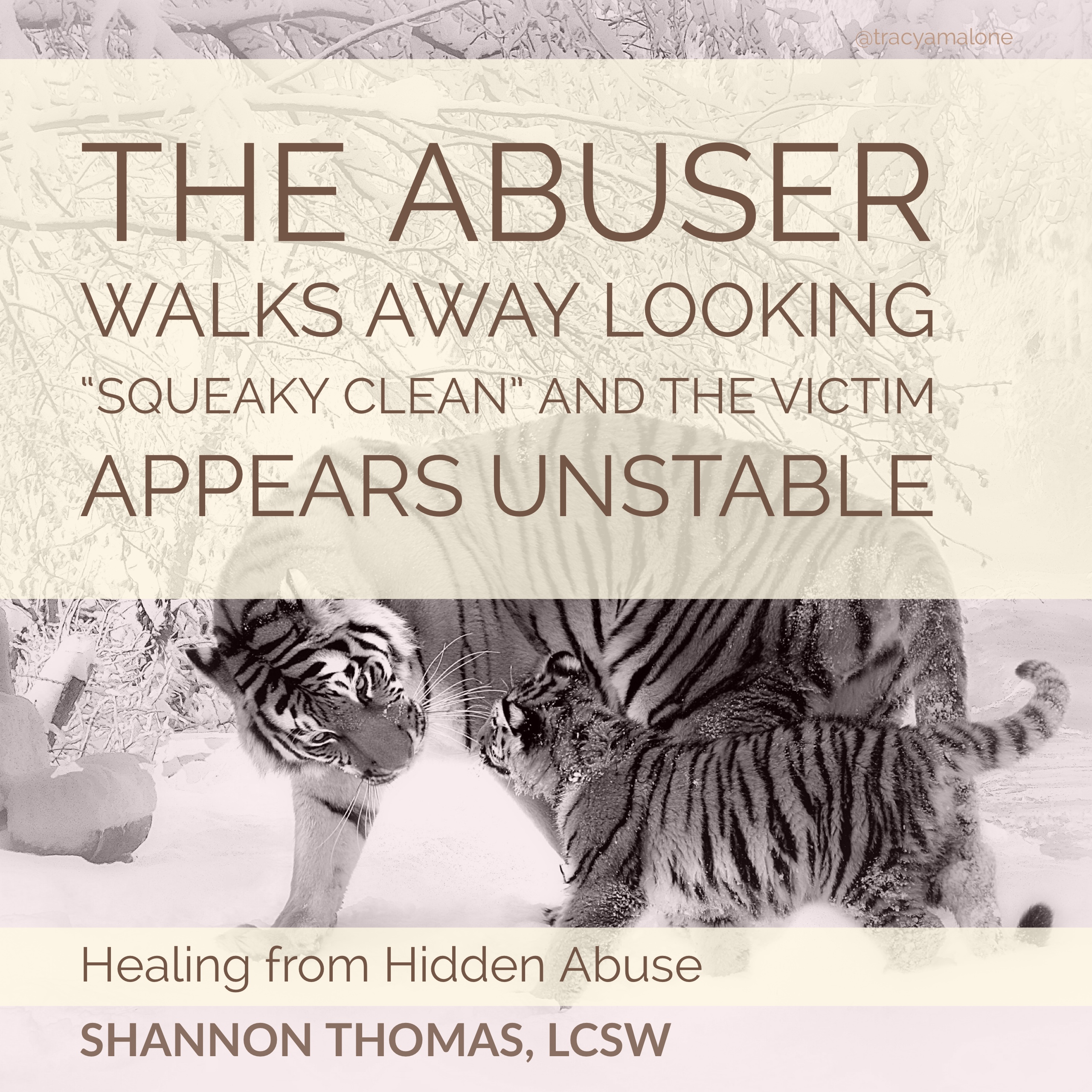 Emotional Abuse Quotes Images Shannon Thomas Healing From Hidden Abuse Quotes  Tracy Malone